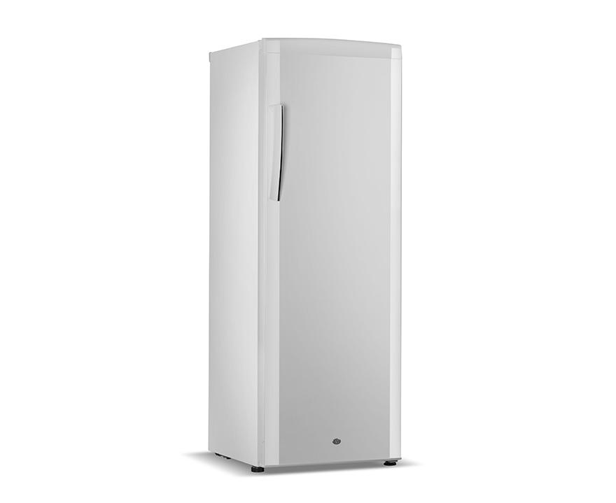 Changer Upright Freezer BD-310B
