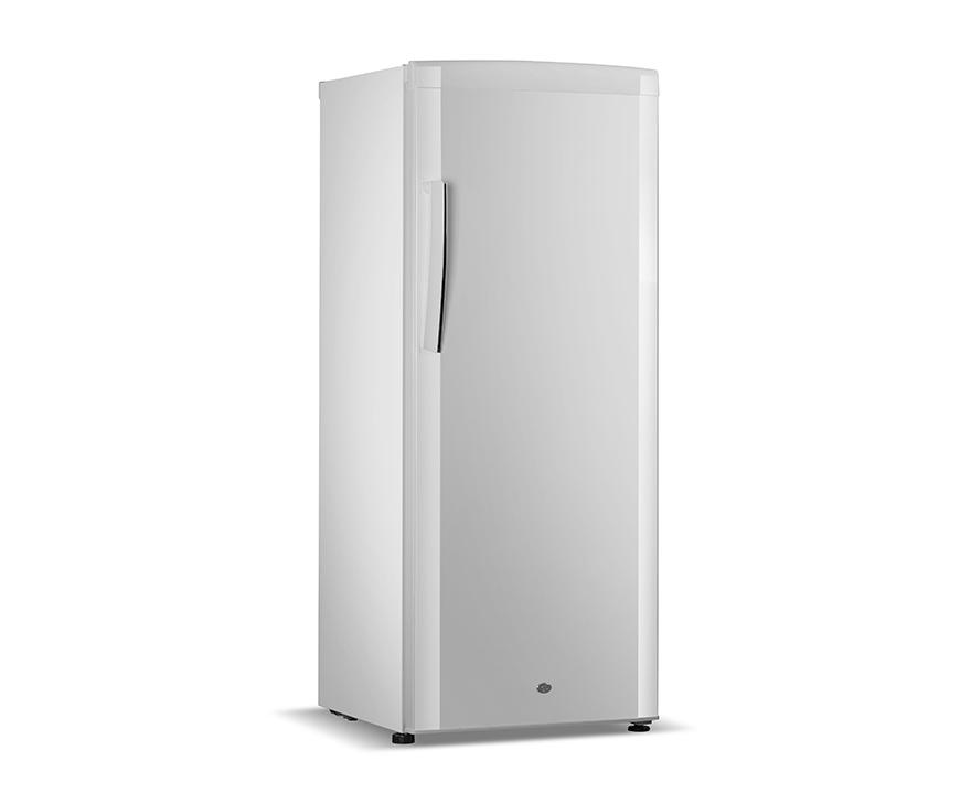 Changer Upright Freezer BD-280B