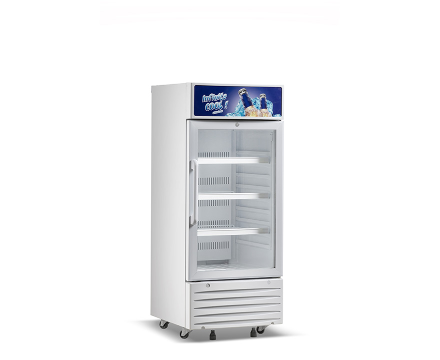 Changer Beverage Cooler SC-170