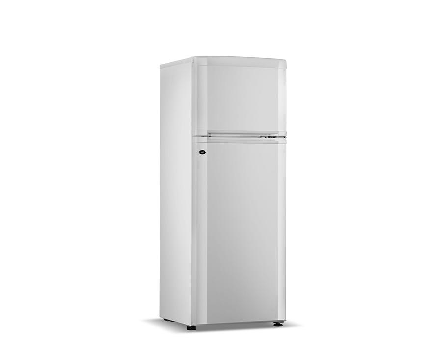 Changer Double-door Refrigerator BCD-258CZ