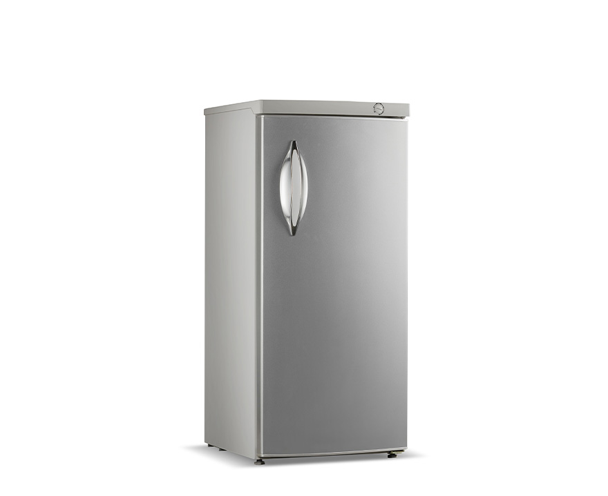 Changer Upright Freezer BD-220
