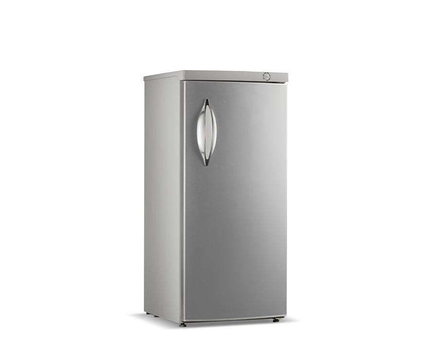 Changer Upright Freezer BD-220