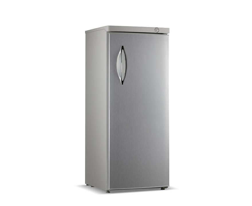 Changer Upright Freezer BD-250